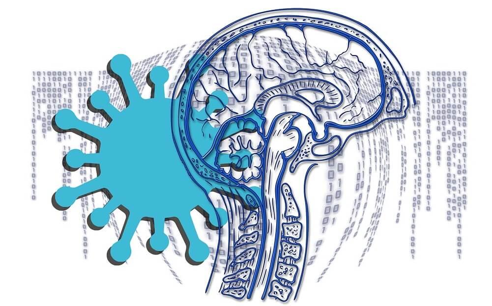 Covid-19 and brain damage